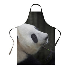 Фартук кулинарный Панда с веткой цвета 3D — фото 1