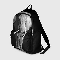 Рюкзак Старый слон цвета 3D-принт — фото 1