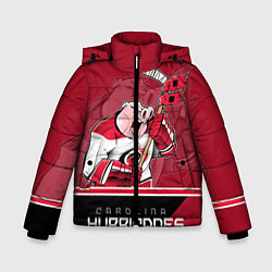 Куртка зимняя для мальчика Carolina Hurricanes цвета 3D-черный — фото 1