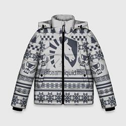 Куртка зимняя для мальчика Team Liquid: Grey Winter цвета 3D-черный — фото 1