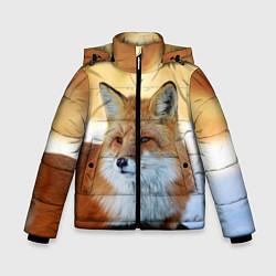 Куртка зимняя для мальчика Лиса цвета 3D-черный — фото 1