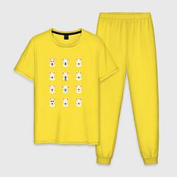 Пижама хлопковая мужская 12 эмоций бультерьера цвета желтый — фото 1