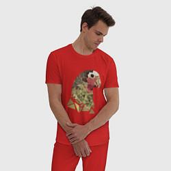 Пижама хлопковая мужская Полигональный попугай цвета красный — фото 2
