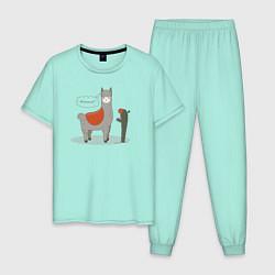 Пижама хлопковая мужская Alpaca Llama цвета мятный — фото 1