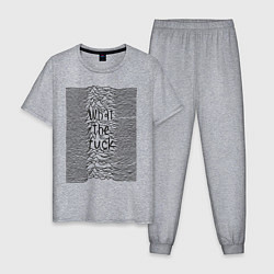 Пижама хлопковая мужская Joy Division: What the fuck цвета меланж — фото 1