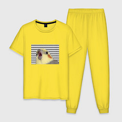 Пижама хлопковая мужская Орущий попугай цвета желтый — фото 1