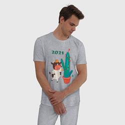 Пижама хлопковая мужская Бычок наряжает кактус цвета меланж — фото 2