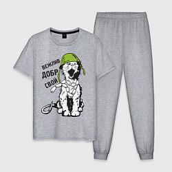 Пижама хлопковая мужская Вежливый котик цвета меланж — фото 1