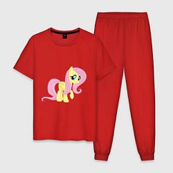 Пижама хлопковая мужская Пони пегас Флаттершай цвета красный — фото 1