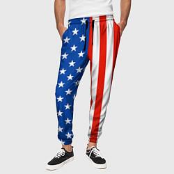Брюки на резинке мужские American Patriot цвета 3D-принт — фото 2