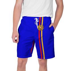 Шорты на шнурке мужские Армения цвета 3D — фото 1