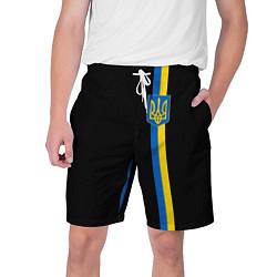 Шорты на шнурке мужские Украина цвета 3D-принт — фото 1