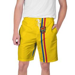 Шорты на шнурке мужские Молдавия: лента с гербом цвета 3D — фото 1