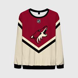 Свитшот мужской NHL: Arizona Coyotes цвета 3D-черный — фото 1