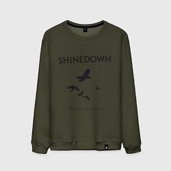 Свитшот хлопковый мужской Shinedown: Sound of Madness цвета хаки — фото 1