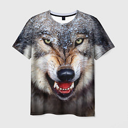 Футболка мужская Взгляд волка цвета 3D — фото 1
