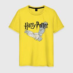 Мужская футболка Гарри Поттер: Букля