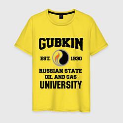 Мужская футболка Унивеситет им.Губкина
