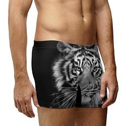 Трусы-боксеры мужские Красавец тигр цвета 3D — фото 2