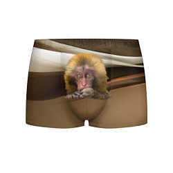 Трусы-боксеры мужские Мартышка цвета 3D-принт — фото 1