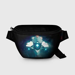 Поясная сумка Destiny 4 цвета 3D — фото 1