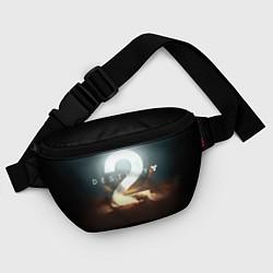 Поясная сумка Destiny 2 цвета 3D-принт — фото 2