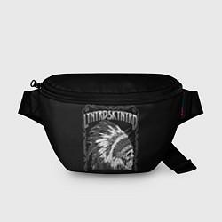 Поясная сумка Lynyrd Skynyrd: Jacksonville цвета 3D — фото 1